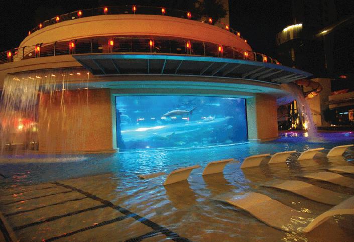 Strange_but_true_swimming_pools.png